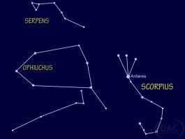 scorpius-ophiuchus-copy